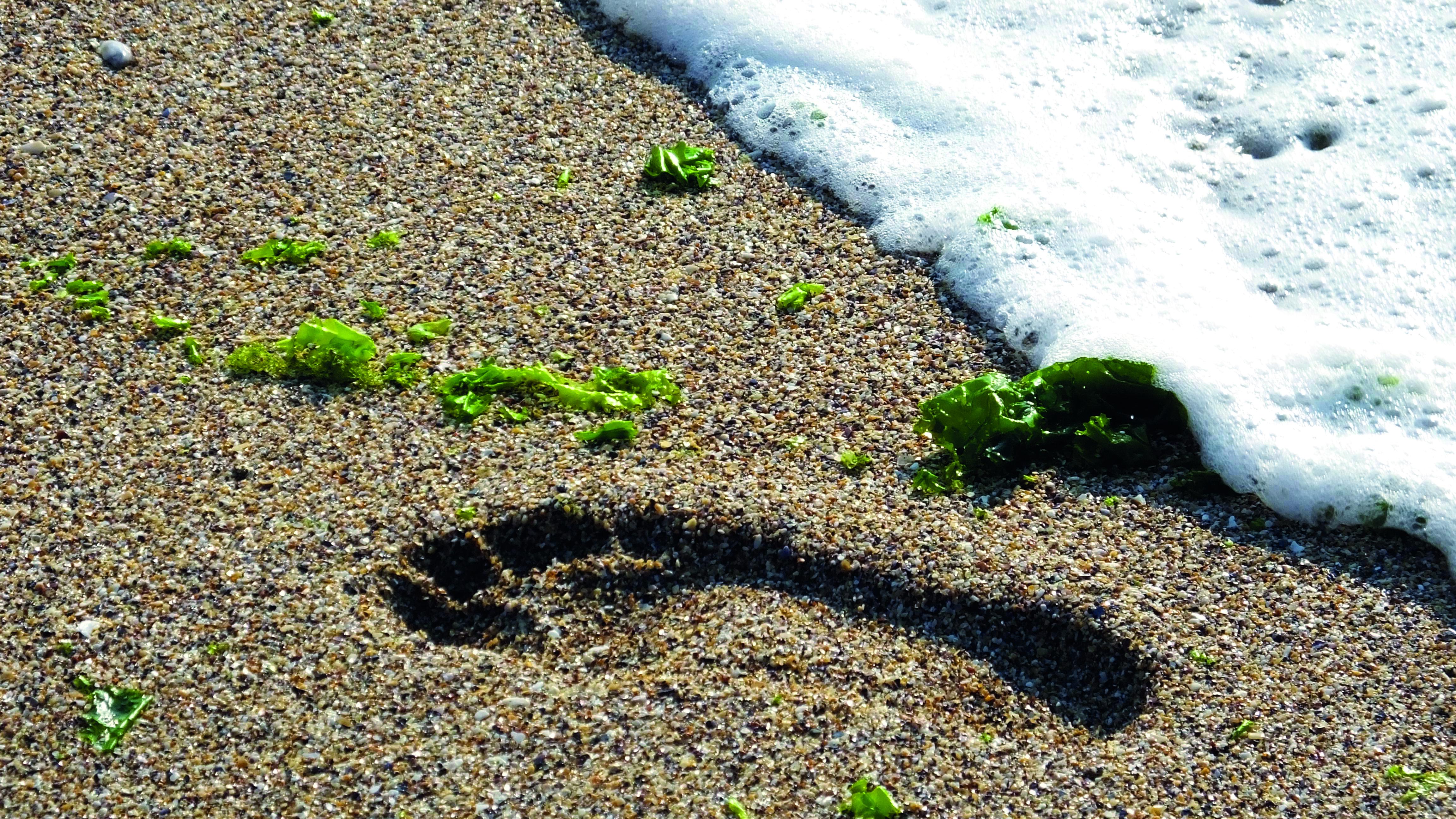 Correndo na areia - Revista Correr